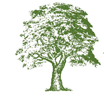 Sycamore Partners profile image