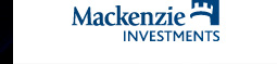 Associate Investment Analyst