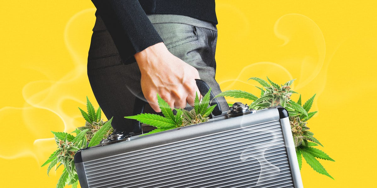Access here alternative investment news about Investors Poured $57M Into Cannabis Tech Startups