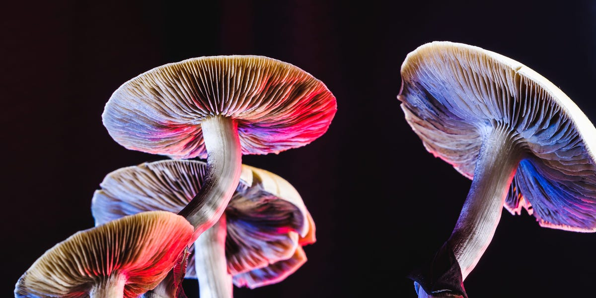Access here alternative investment news about Psychedelics Company Atai Raises $157 Million, Breaking Industry Record