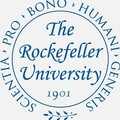 Rockefeller University Endowment