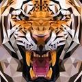 Denis Yris profile image
