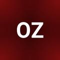 Olga Zozulya profile image
