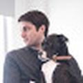 Robert Genovese profile image