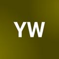 Yelin Wen profile image