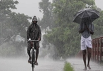 Access here alternative investment news about Kerala Weather Forecast: Heavy Rainfall; Red Alert Issued In Some Districts - The Financial Express