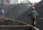 iron-ore-price-plunges-panic-selling-of-coking-coal