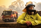 Access here alternative investment news about Greens Want Coal, Gas Companies To Fund More Firefighters For Queensland