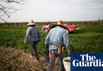 Access here alternative investment news about 'without Water We Can't Grow Anything': Can Small Farms Survive California's Landmark Water Law? | Environment