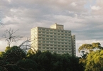 melbournes-tower-lockdowns-reveal-the-precarious-future-of-victorian-public-housing-abc-news