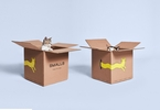 Access here alternative investment news about Direct-to-consumer Cat Food Startup Smalls Raises $9M - Techcrunch