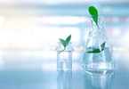 Access here alternative investment news about S Korean Exosome Biotech Firm Ilias Biologics Raises $20.6M In Series B Round