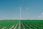 Access here alternative investment news about How The Virus Slowed The Booming Wind Energy Business - The New York Times
