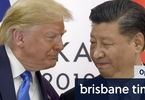Access here alternative investment news about Trump Throws One Final Curveball In His Beijing Battle