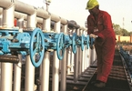 ioc-to-monetise-pipeline-assets-says-many-investors-interested-business-standard-news