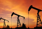 Access here alternative investment news about The Curse Of Oil - Businessday Ng