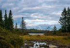 Access here alternative investment news about Maine's North Woods Offers Glimpse Of Future Fights For 'green Energy'