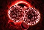shenzhen-hepalink-pharma-invests-60m-in-tpg-biotech-fund