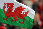 welsh-pension-pool-starts-hunt-for-outside-managers