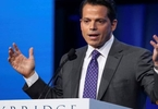 washington-dreams-on-hold-scaramucci-revels-in-las-vegas-glow