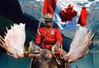 Access here alternative investment news about Happy 150th Birthday Canada