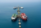nigerias-oil-production-capped-at-18m-bpd-as-opec-extends-curbs-businessday-news-you-can-trust-businessday-news-you-can-trust