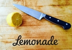 insurtech-lemonade-raises-120m-in-round-led-by-softbank