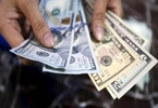 forex-reserves-fall-by-152m-the-financial-express
