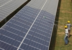 Access here alternative investment news about Japan's Softbank To Invest Up To $100b In India Solar Power Generation: Report
