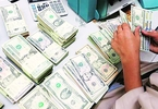 forex-reserves-fall-by-225-bn-to-407815-bn-the-financial-express