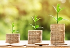 Access here alternative investment news about India Digest: Kobster, Mcxtra, Headout, Wishberry Secure Funding