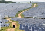 Access here alternative investment news about China To Speed Up Efforts To Cut Solar, Wind Subsidies: Draft Guidelines