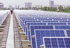 renewable-energy-top-developers-gaining-but-seeing-high-churn-also