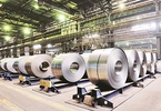 Access here alternative investment news about Jsw Steel To Invest Over Rs 5,000 Cr On Strengthening Downstream Mfg Capacity | Business Standard News