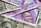 Access here alternative investment news about VC Trends To Watch Out For In India This Year