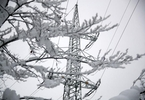 Access here alternative investment news about German Grid Firms See Extra Costs To Meet Renewable Power Target