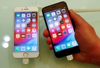weak-iphone-demand-prompts-ams-to-suspend-dividend-avoid-full-year-outlook-reuters