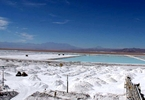 Access here alternative investment news about Tianqi Lithium To Name Three Directors To Sqm Board Next Month