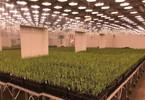 alaska-permanent-fund-invests-100m-in-bug-startup-indigo-agriculture