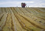 china-to-invest-450b-modernising-agriculture-by-2020