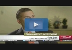 china-mexico-12b-pe-fund-investing-in-energy-firm